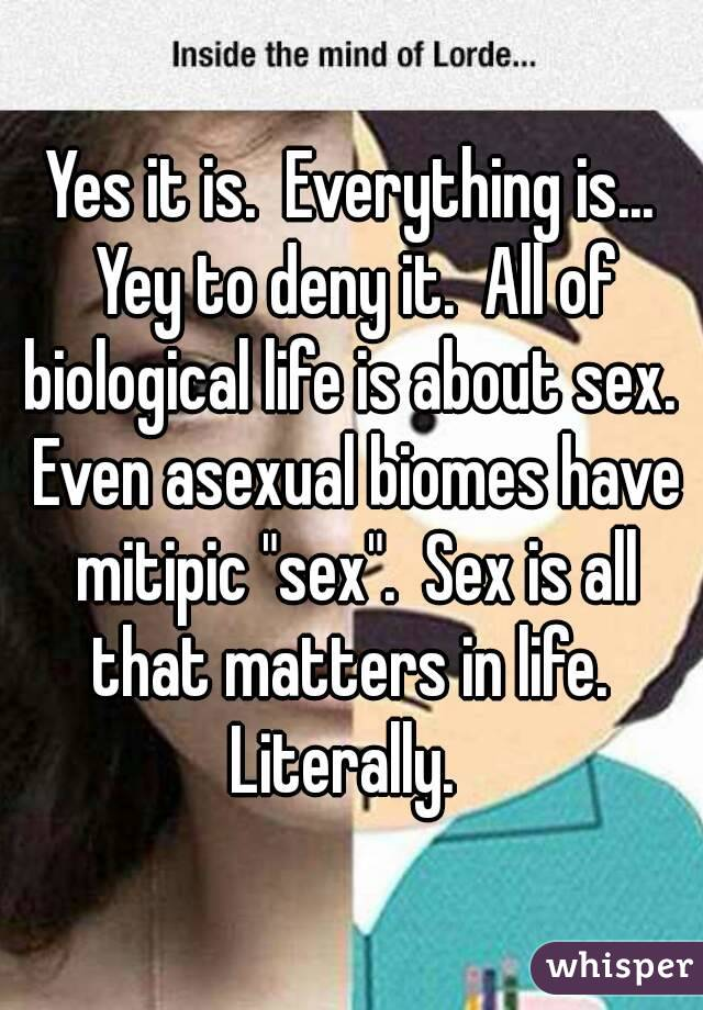 Is sex all that matters