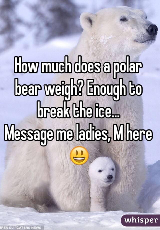 How much does a polar bear weigh