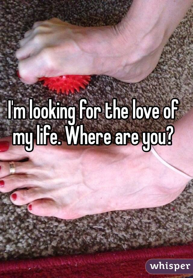 Looking for the love of my life