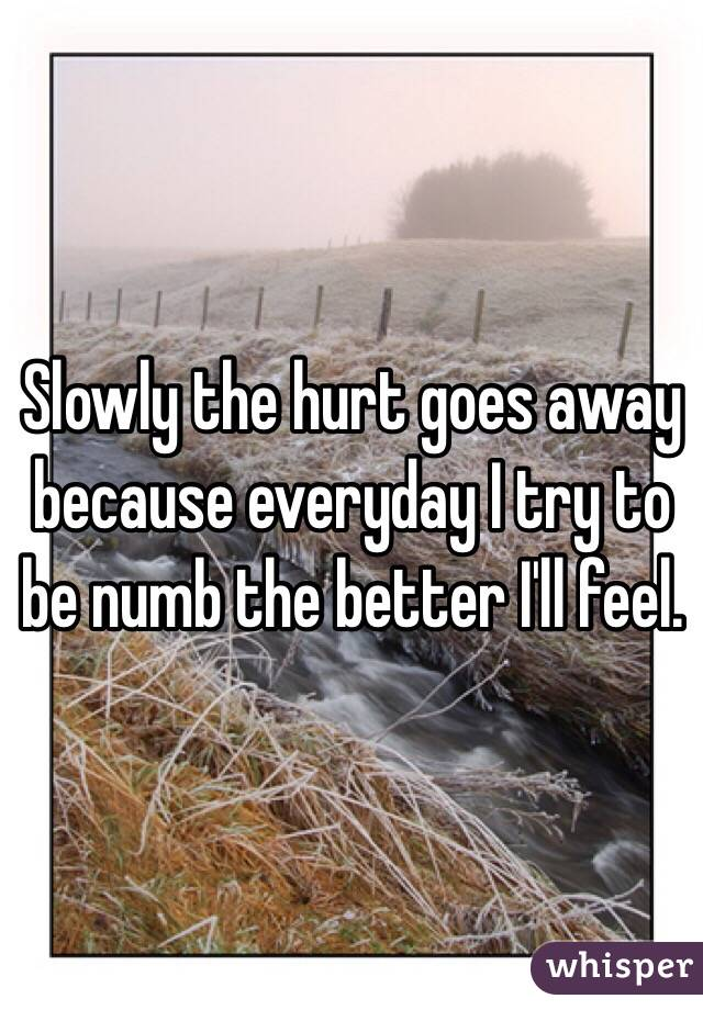 Slowly the hurt goes away because everyday I try to be numb the better I'll feel.