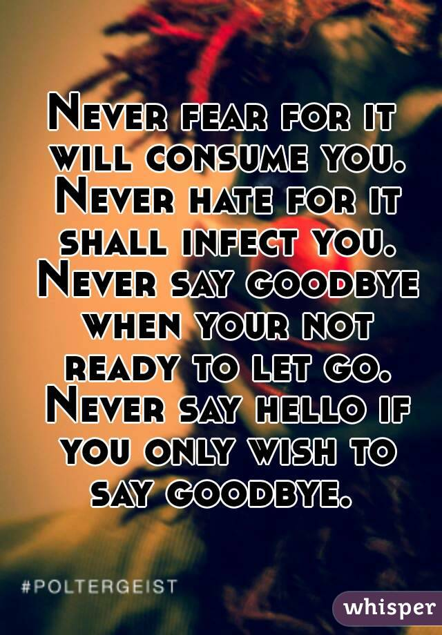 Never fear for it will consume you. Never hate for it shall infect you. Never say goodbye when your not ready to let go. Never say hello if you only wish to say goodbye.