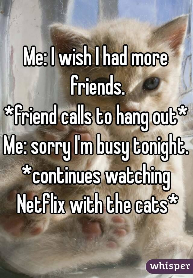 Me: I wish I had more friends. *friend calls to hang out* Me: sorry I'm busy tonight. *continues watching Netflix with the cats*