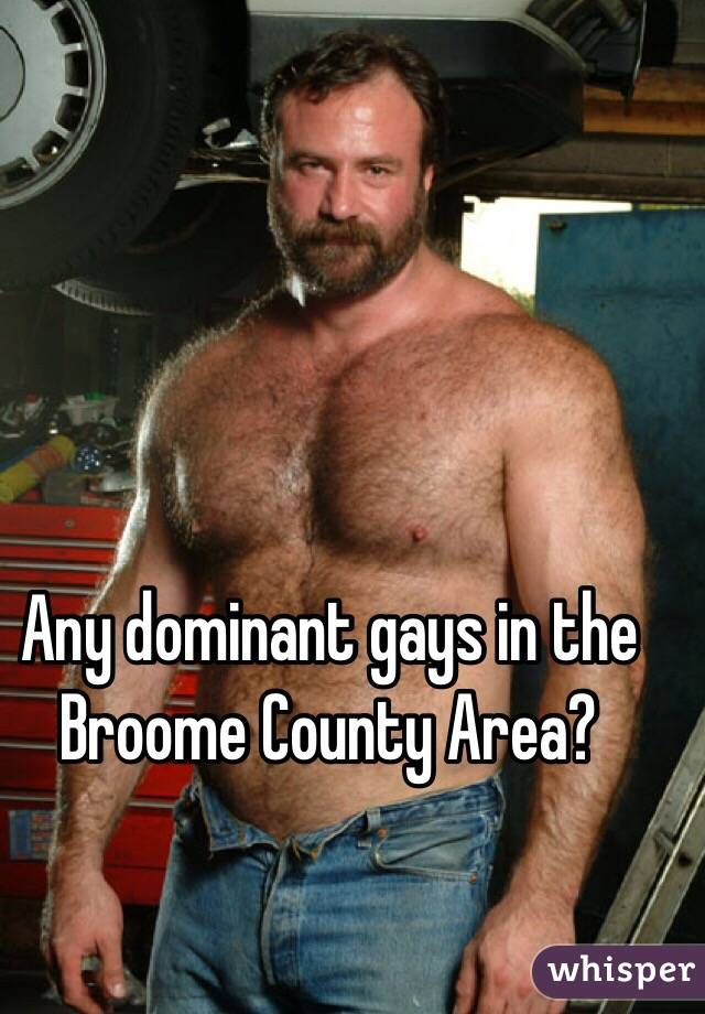 Any dominant gays in the Broome County Area?