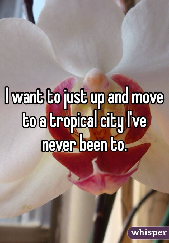 I want to just up and move to a tropical city I've never been to.