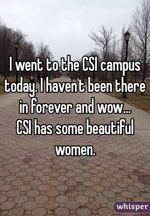 I went to the CSI campus today. I haven't been there in forever and wow...  CSI has some beautiful women.