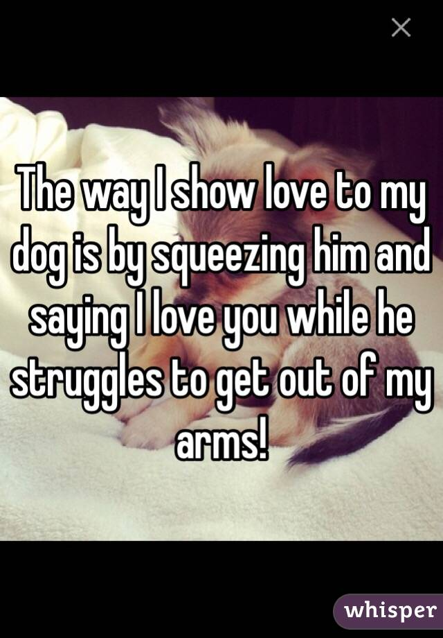 The way I show love to my dog is by squeezing him and saying I love you while he struggles to get out of my arms!