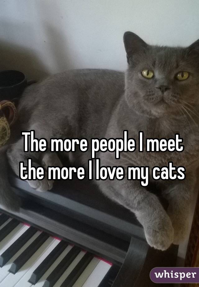 The more people I meet the more I love my cats