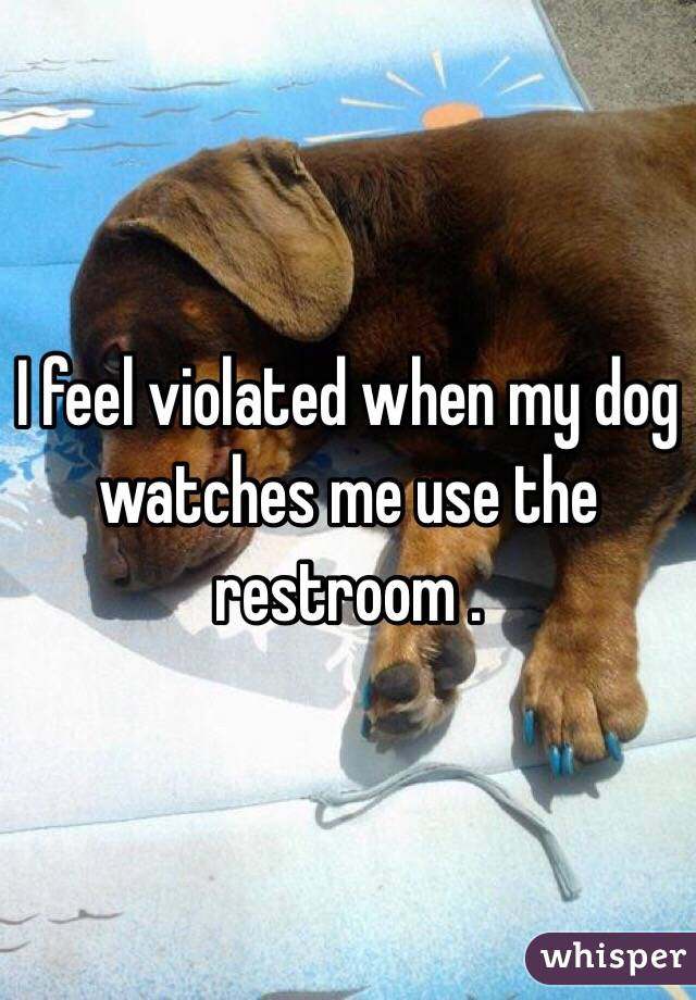 I feel violated when my dog watches me use the restroom .