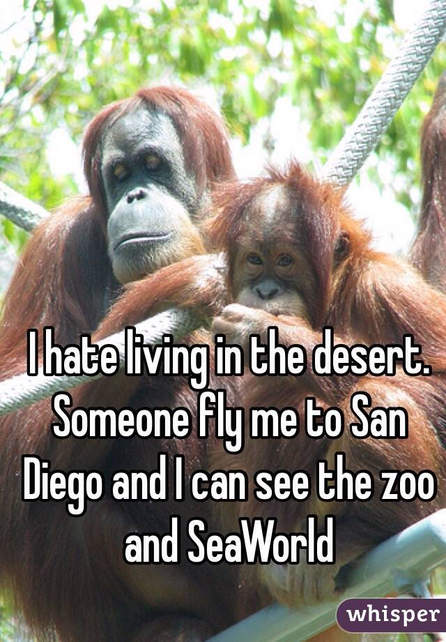I hate living in the desert. Someone fly me to San Diego and I can see the zoo and SeaWorld