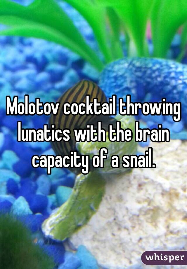 Molotov cocktail throwing lunatics with the brain capacity of a snail.