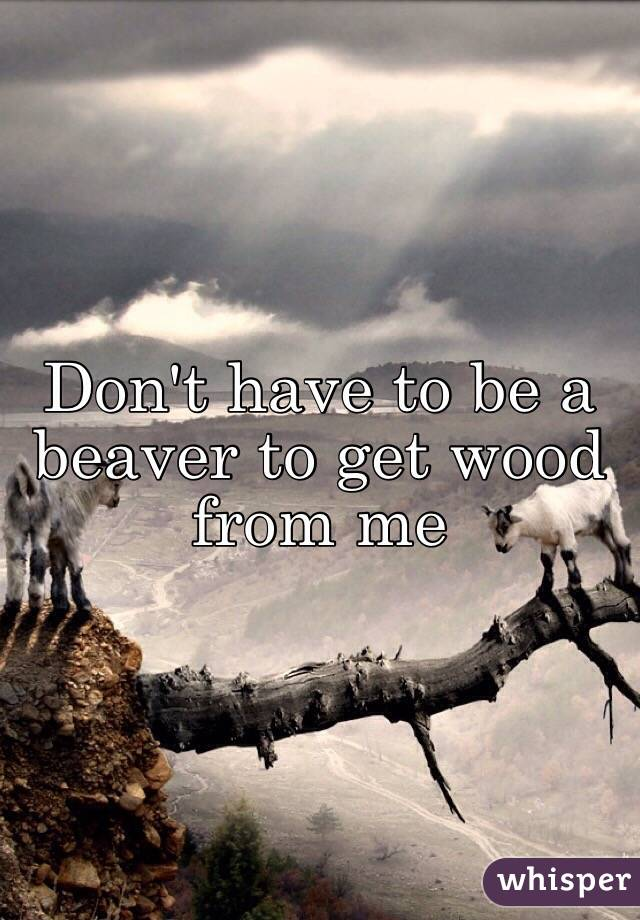 Don't have to be a beaver to get wood from me