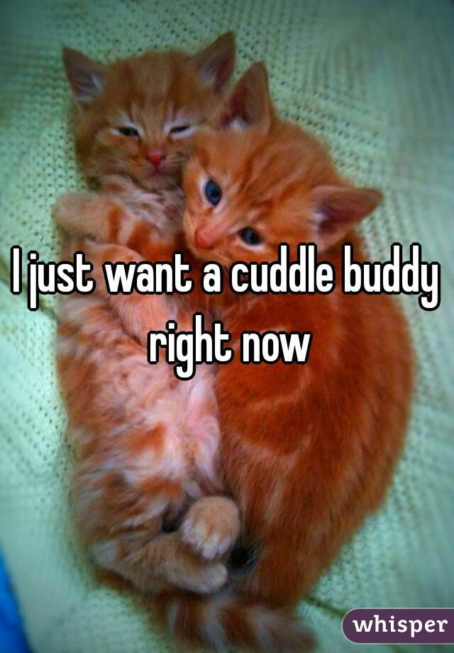 I just want a cuddle buddy right now