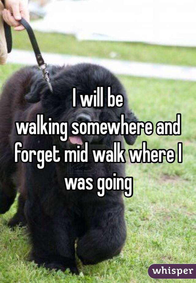 I will be walking somewhere and forget mid walk where I was going