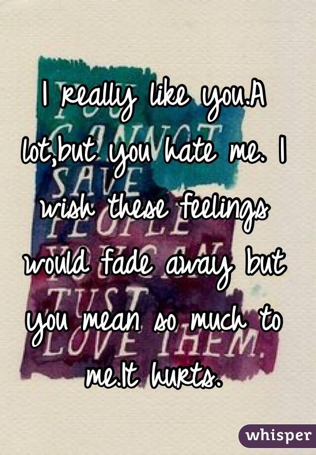 I really like you.A lot,but you hate me. I wish these feelings would fade away but you mean so much to me.It hurts.