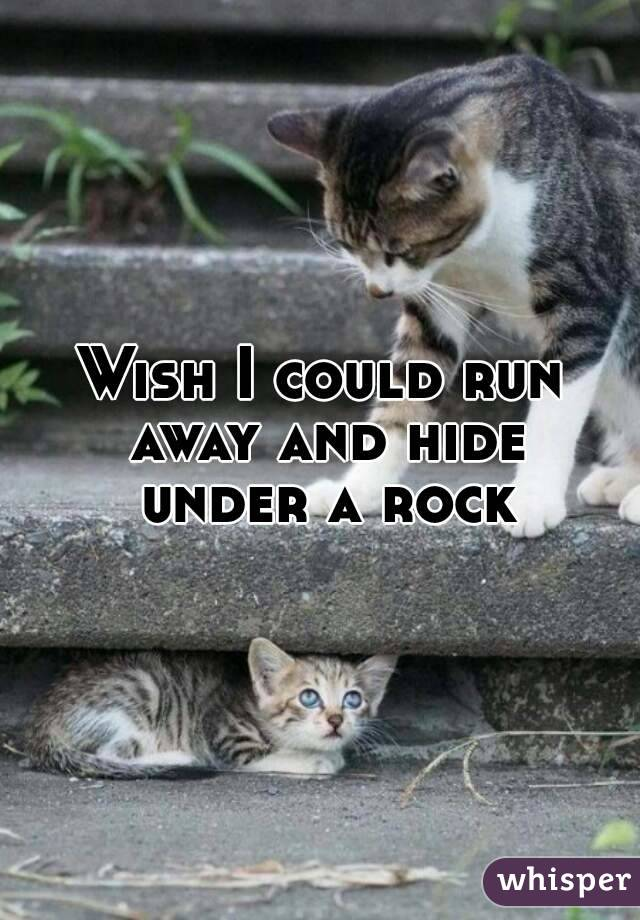 Wish I could run away and hide under a rock