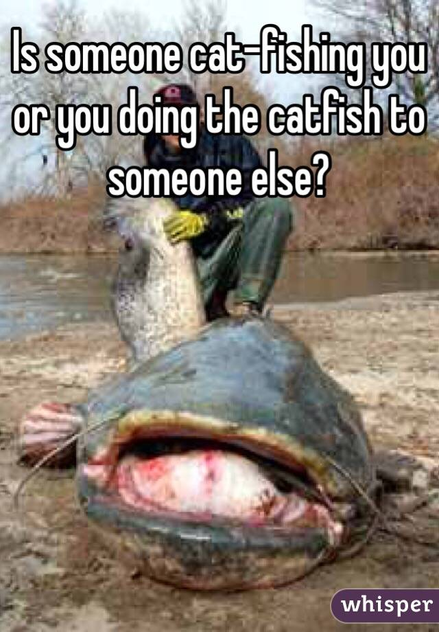 Is someone cat-fishing you or you doing the catfish to someone else?