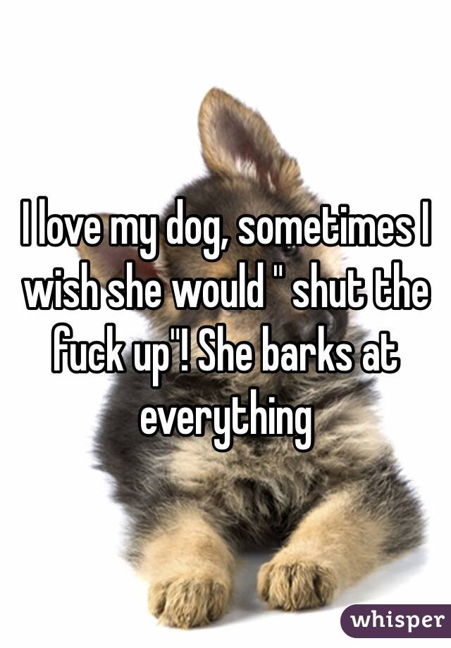 "I love my dog, sometimes I wish she would "" shut the fuck up""! She barks at everything"