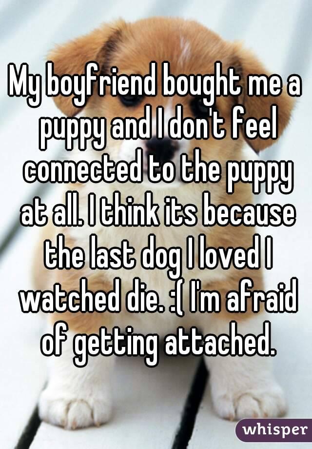 My boyfriend bought me a puppy and I don't feel connected to the puppy at all. I think its because the last dog I loved I watched die. :( I'm afraid of getting attached.