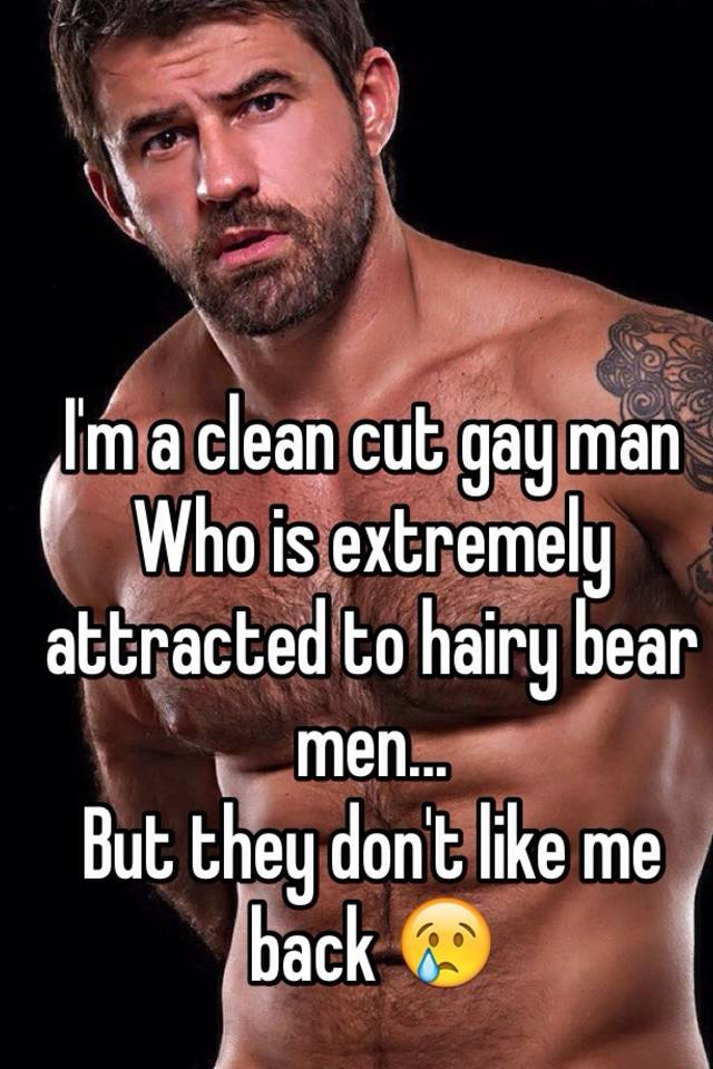 Hairy bear red