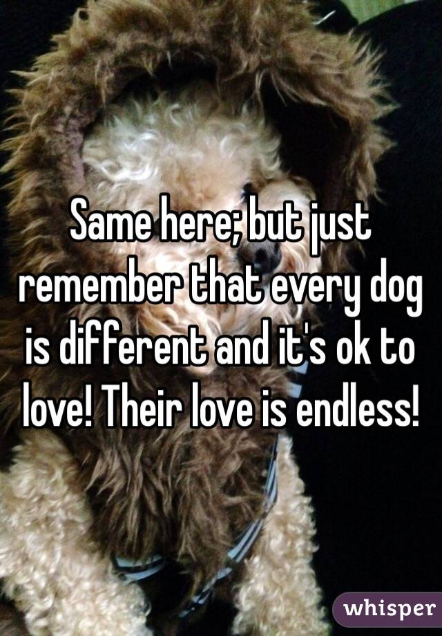Same here; but just remember that every dog is different and it's ok to love! Their love is endless!