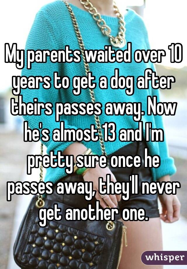 My parents waited over 10 years to get a dog after theirs passes away. Now he's almost 13 and I'm pretty sure once he passes away, they'll never get another one.