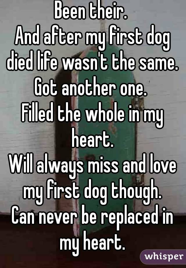 Been their.  And after my first dog died life wasn't the same.  Got another one.  Filled the whole in my heart.  Will always miss and love my first dog though.  Can never be replaced in my heart.