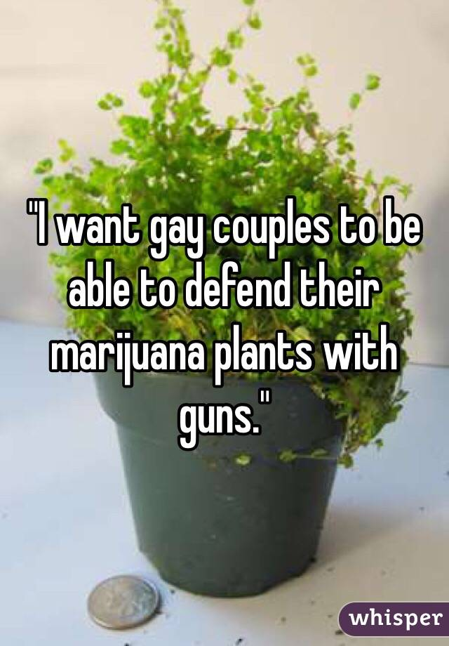 """I want gay couples to be able to defend their marijuana plants with guns."""