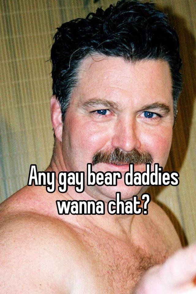 bear gay chat