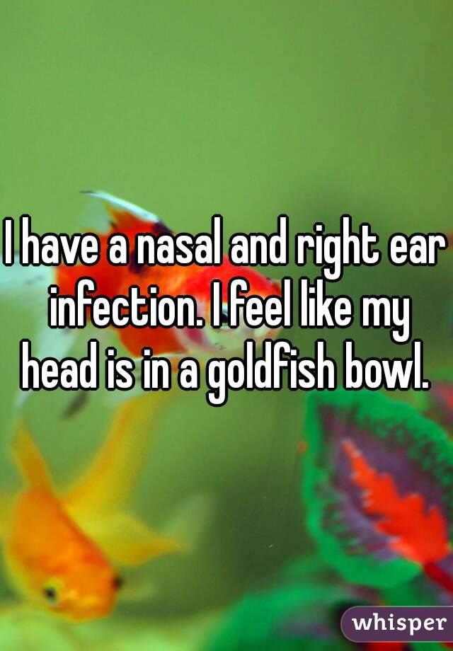I have a nasal and right ear infection. I feel like my head is in a goldfish bowl.