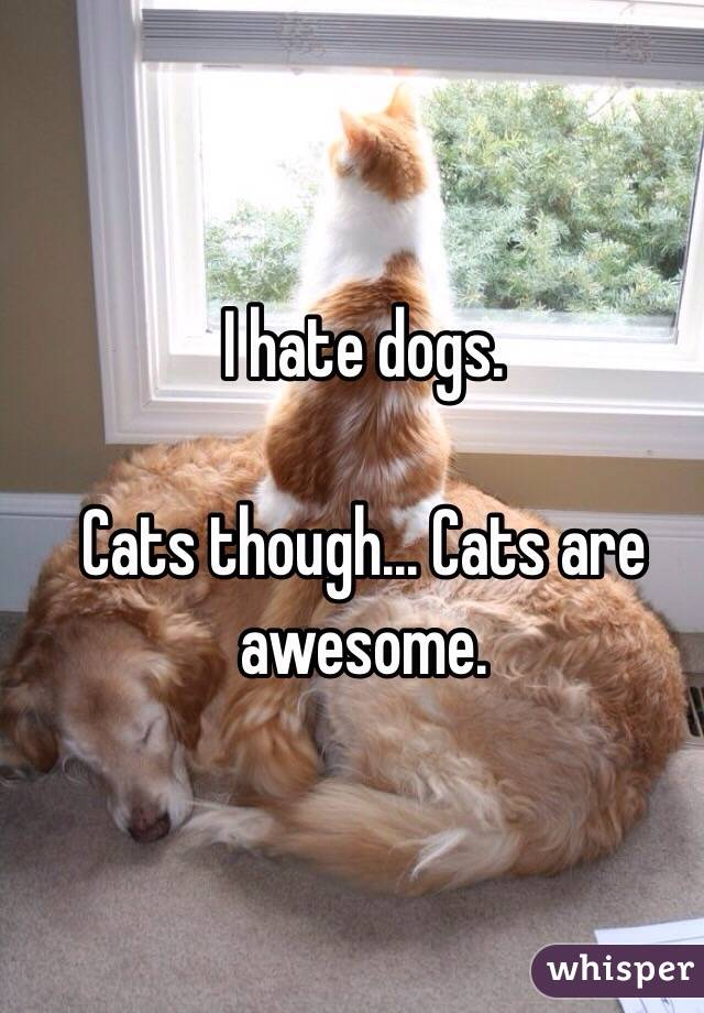 I hate dogs.   Cats though... Cats are awesome.