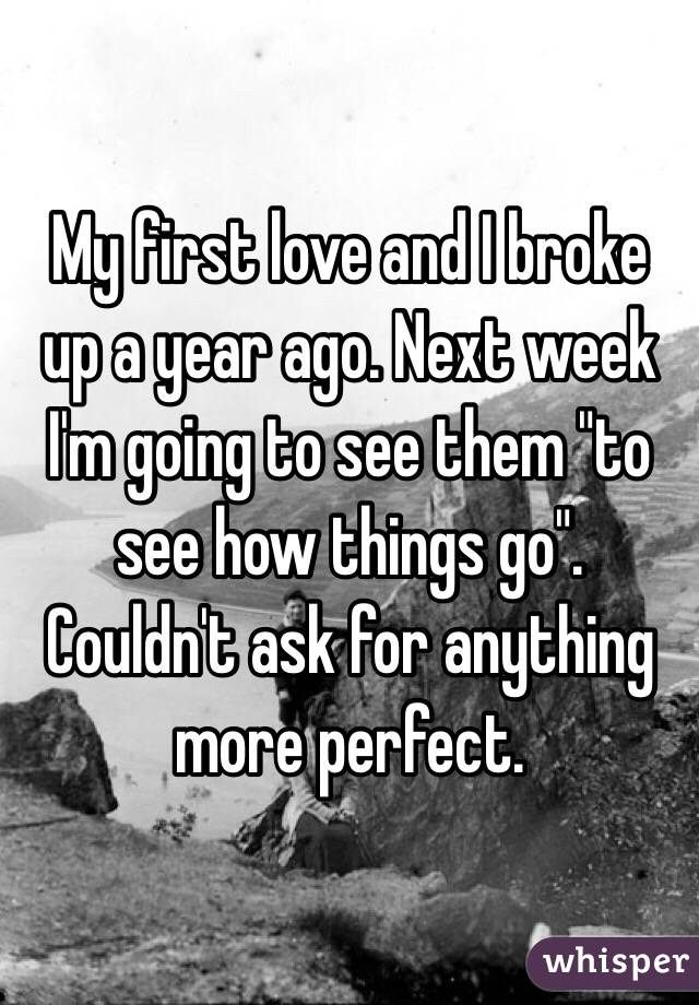 """My first love and I broke up a year ago. Next week I'm going to see them """"to see how things go"""".  Couldn't ask for anything more perfect."""