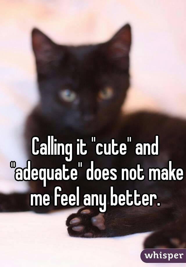 """Calling it """"cute"""" and """"adequate"""" does not make me feel any better."""