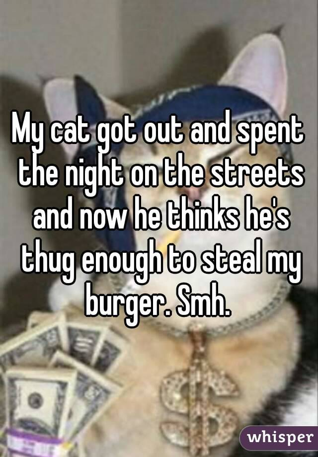 My cat got out and spent the night on the streets and now he thinks he's thug enough to steal my burger. Smh.