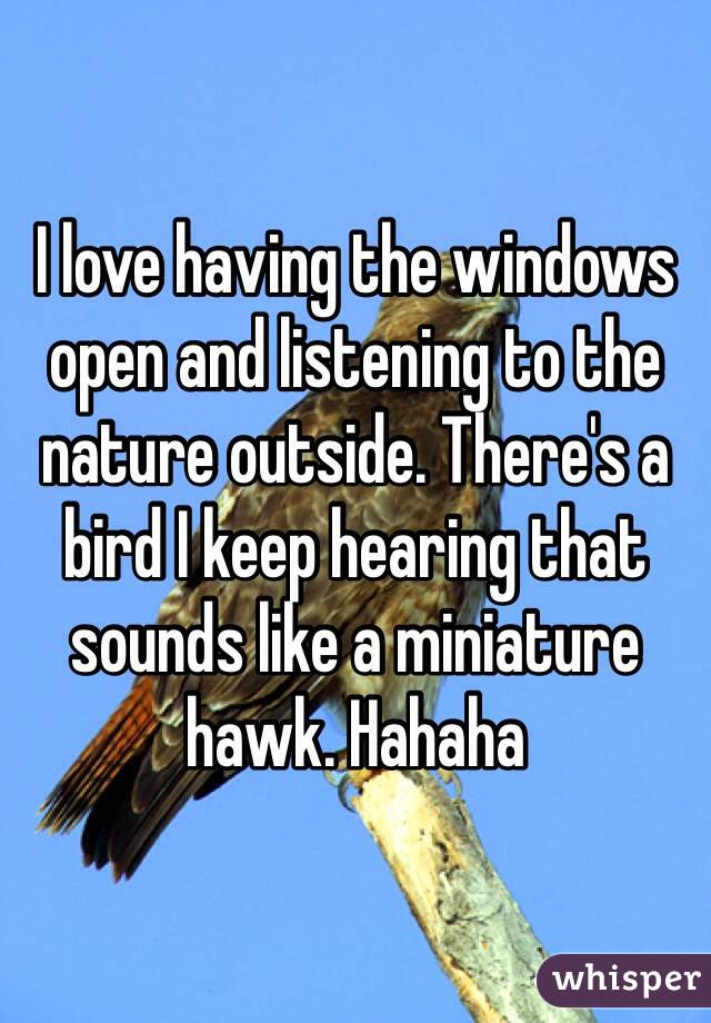 I love having the windows open and listening to the nature outside. There's a bird I keep hearing that sounds like a miniature hawk. Hahaha