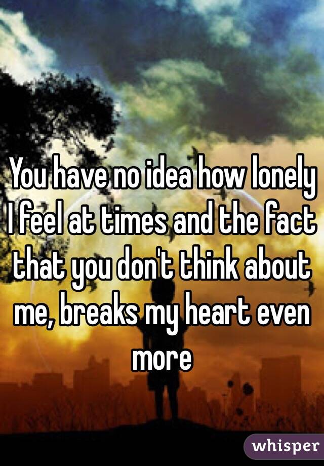 You have no idea how lonely I feel at times and the fact that you don't think about me, breaks my heart even more