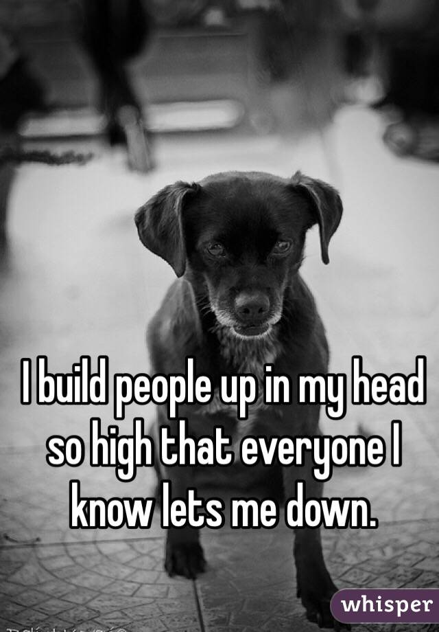 I build people up in my head so high that everyone I know lets me down.