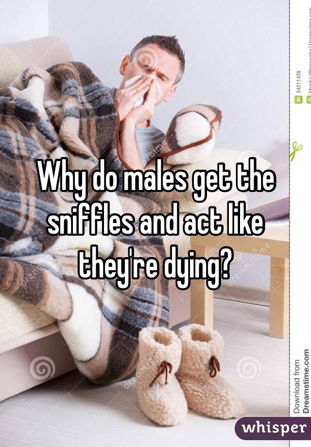 Why do males get the sniffles and act like they're dying?