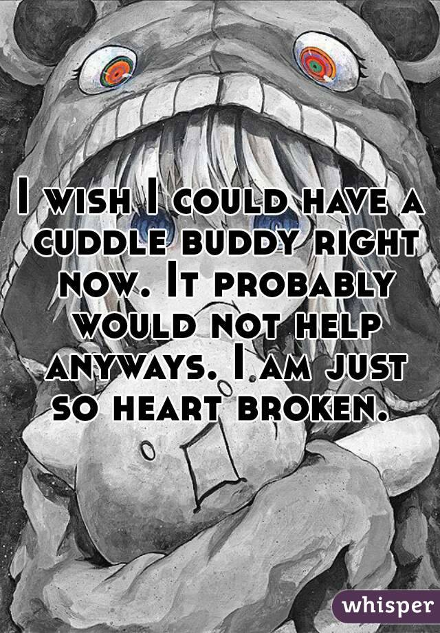I wish I could have a cuddle buddy right now. It probably would not help anyways. I am just so heart broken.