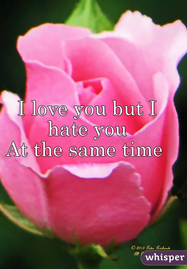 I love you but I hate you  At the same time