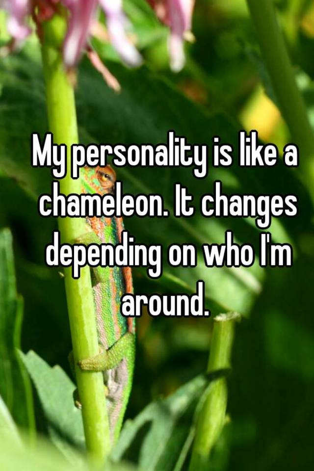 Chameleon personality what is a Are You