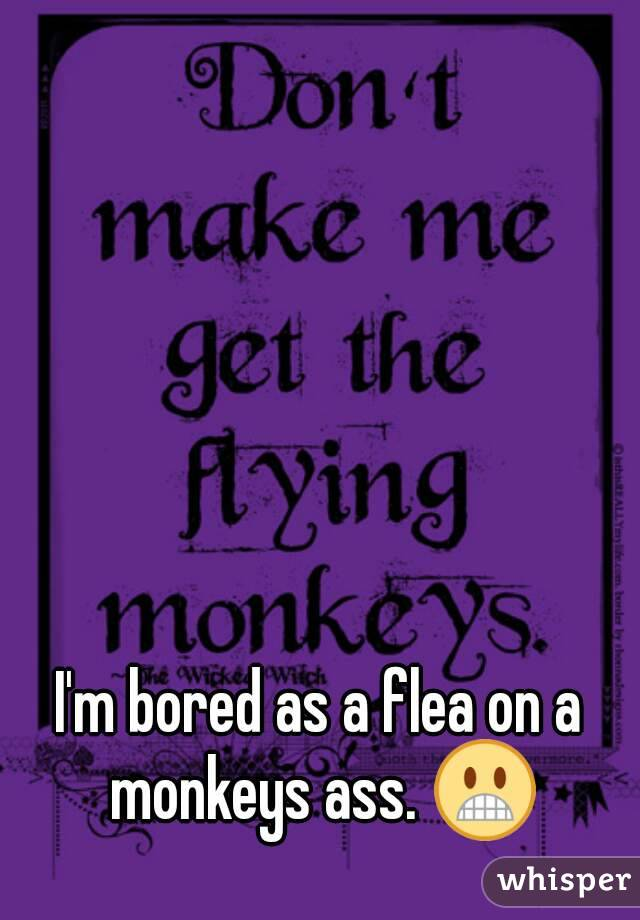 I'm bored as a flea on a monkeys ass. 😬