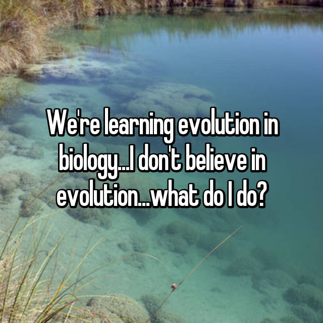 We're learning evolution in biology...I don't believe in evolution...what do I do?