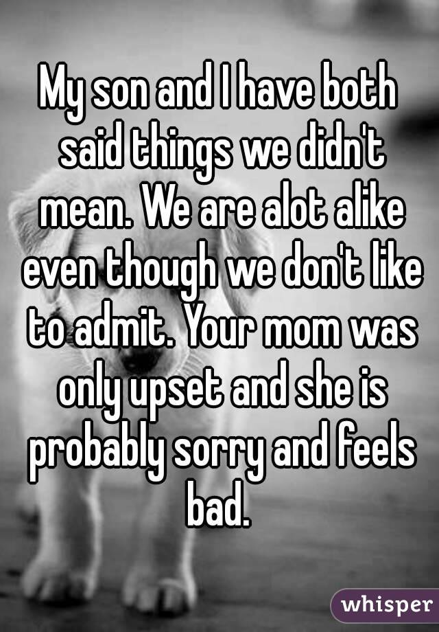 I said something mean and i feel bad