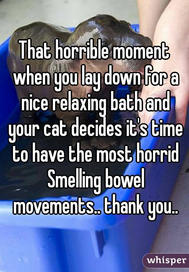 That horrible moment when you lay down for a nice relaxing bath and your cat decides it's time to have the most horrid Smelling bowel movements.. thank you..