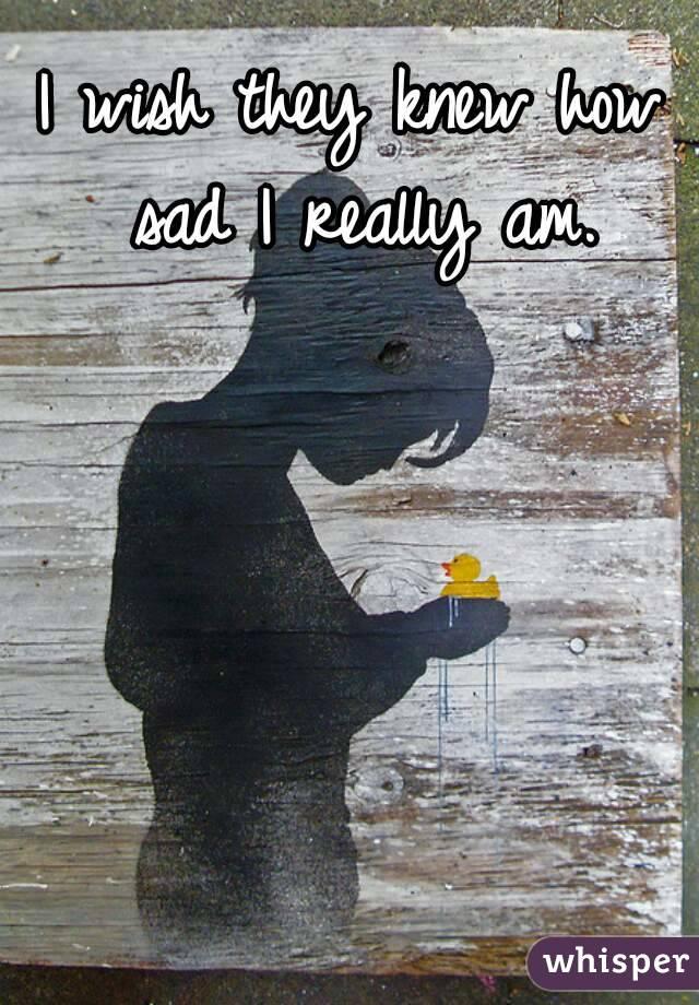 I wish they knew how sad I really am.