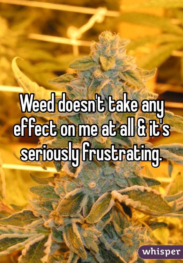 Weed doesn't take any effect on me at all & it's seriously frustrating.