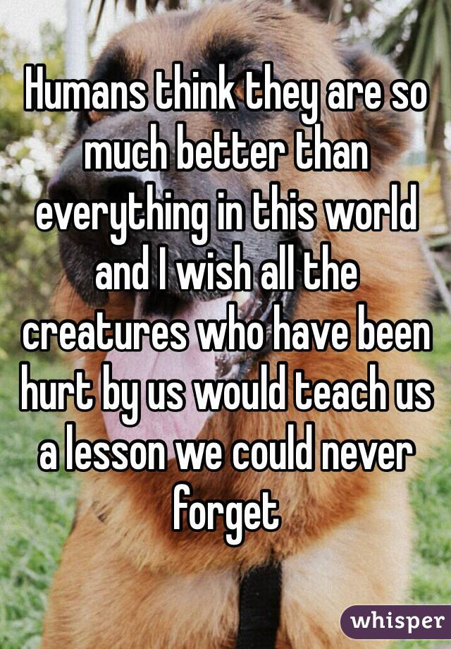 Humans think they are so much better than everything in this world and I wish all the creatures who have been hurt by us would teach us a lesson we could never forget