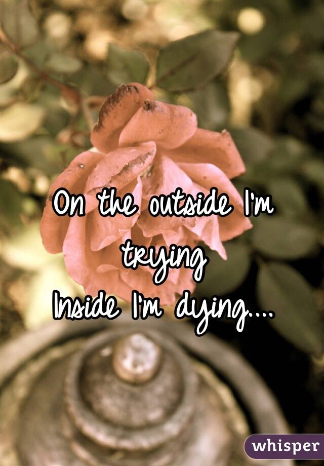 On the outside I'm trying Inside I'm dying....