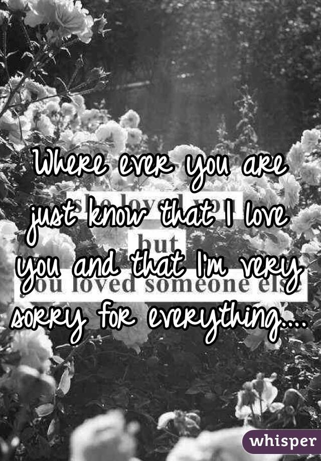 Where ever you are just know that I love you and that I'm very sorry for everything....