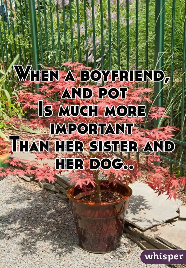 When a boyfriend, and pot Is much more important  Than her sister and her dog..